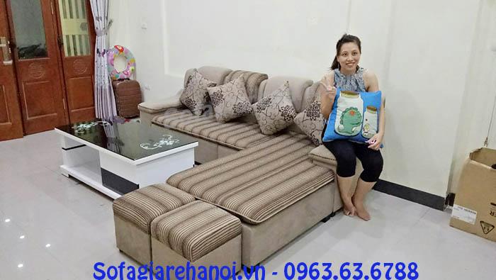Hình ảnh ghế sofa nỉ chữ L bài trí trong phòng khách gia đình Việt