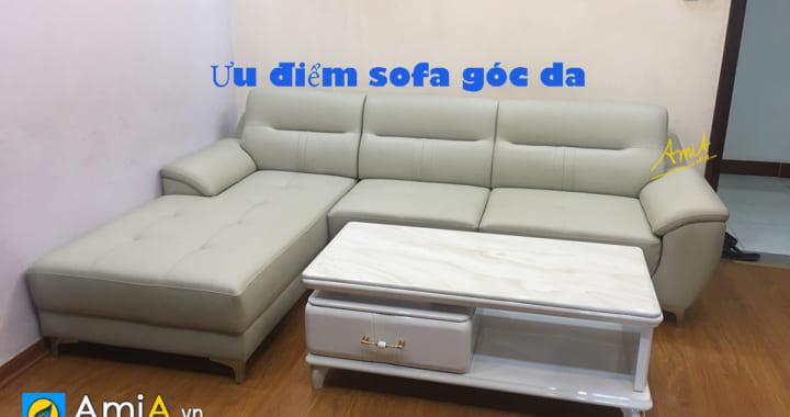 ưu nhược điểm sofa